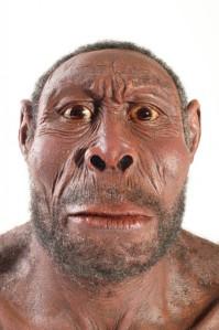 homo-erectus_459008-681x1024[1]