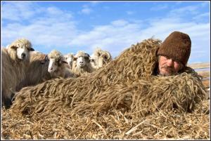 Shepherds sleeping bag